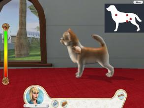compare Paws & Claws: Pampered Pets CD key prices