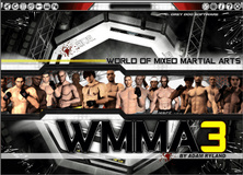 compare World of Mixed Martial Arts 3 CD key prices