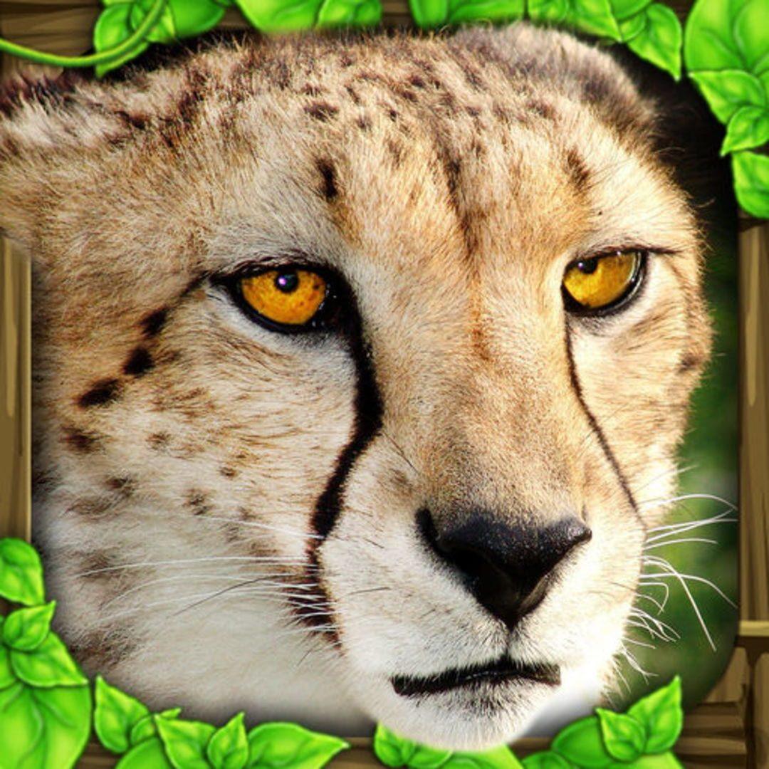 buy Cheetah Simulator cd key for all platform