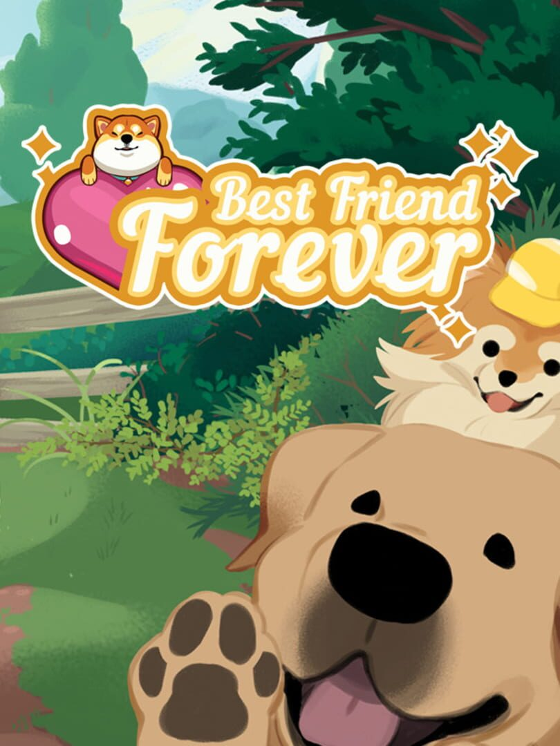 buy Best Friend Forever cd key for pc platform