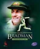 compare Don Bradman Cricket 14 CD key prices